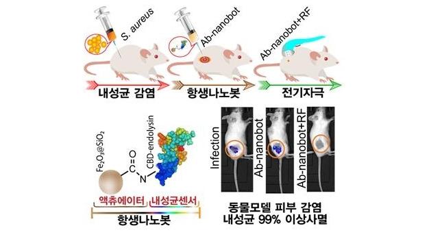[지금은 과학] 항생제 내성을 극복하는 또 다른 방법 '항생제 나노봇'